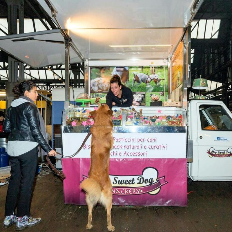 Dog Sweet dog, food truck per cani