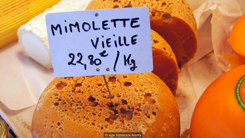 EB6DP3 Mimolette is a cheese traditionally produced around the city of Lille France. In France it is also known as Boule de Lille