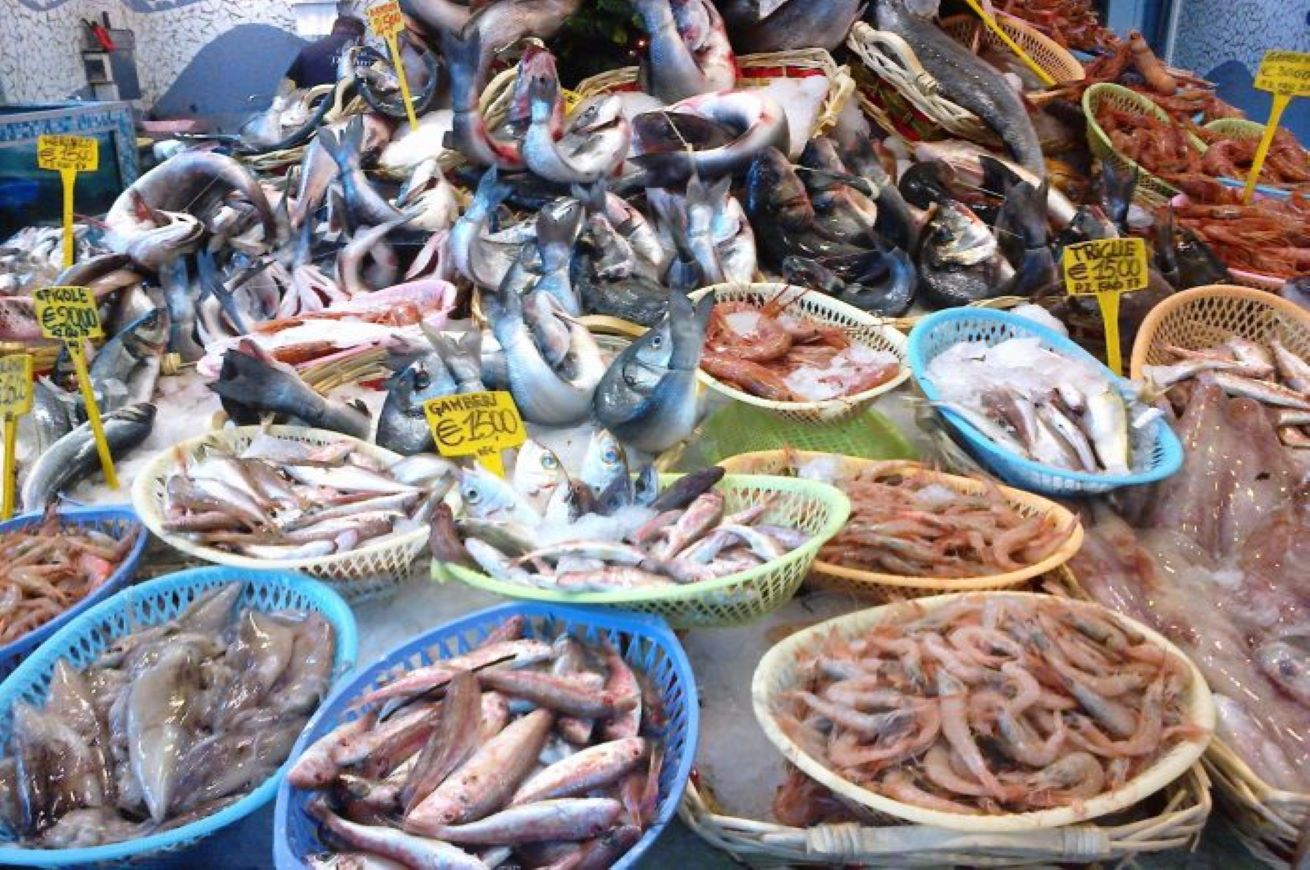 fish dependence day
