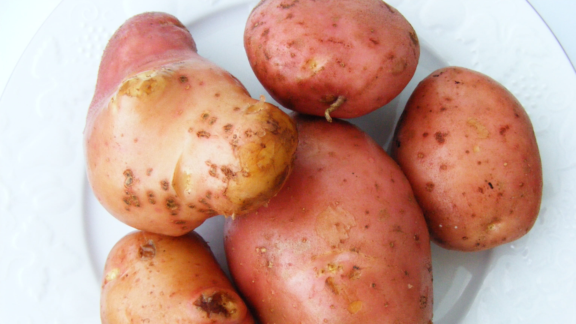 patate-rosse